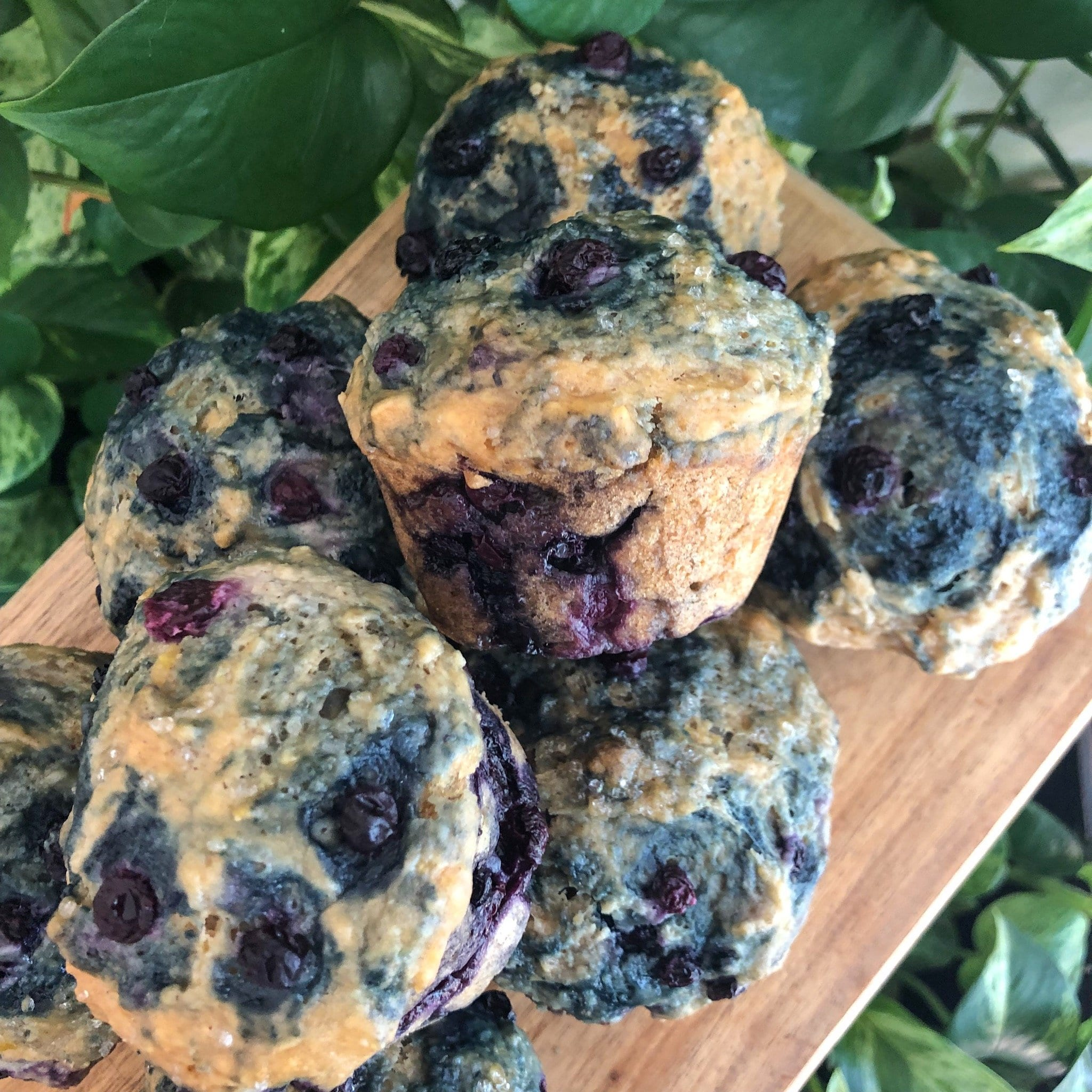 blueberry muffins in a pile