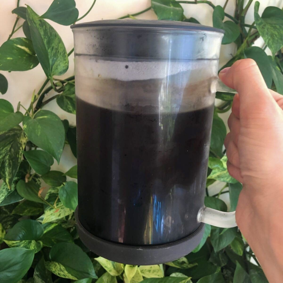 iced coffee cold brew