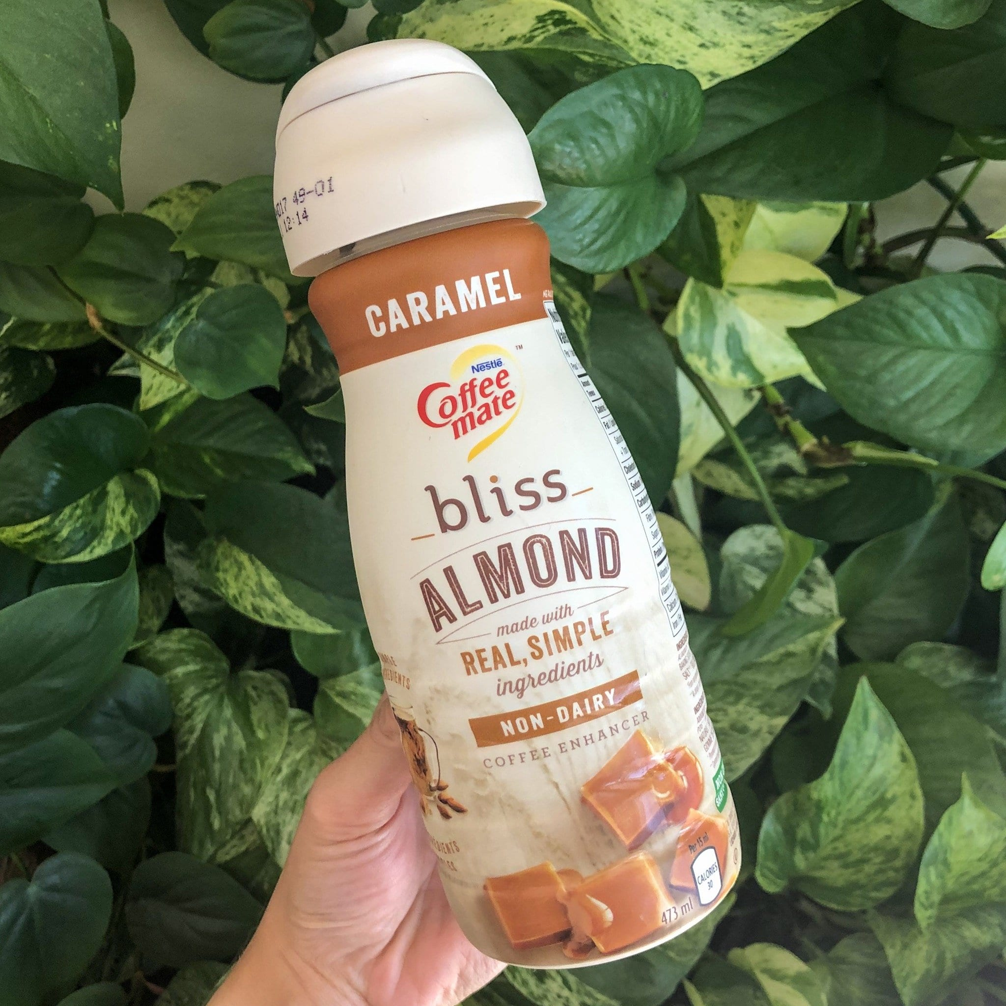 vegan caramel creamer