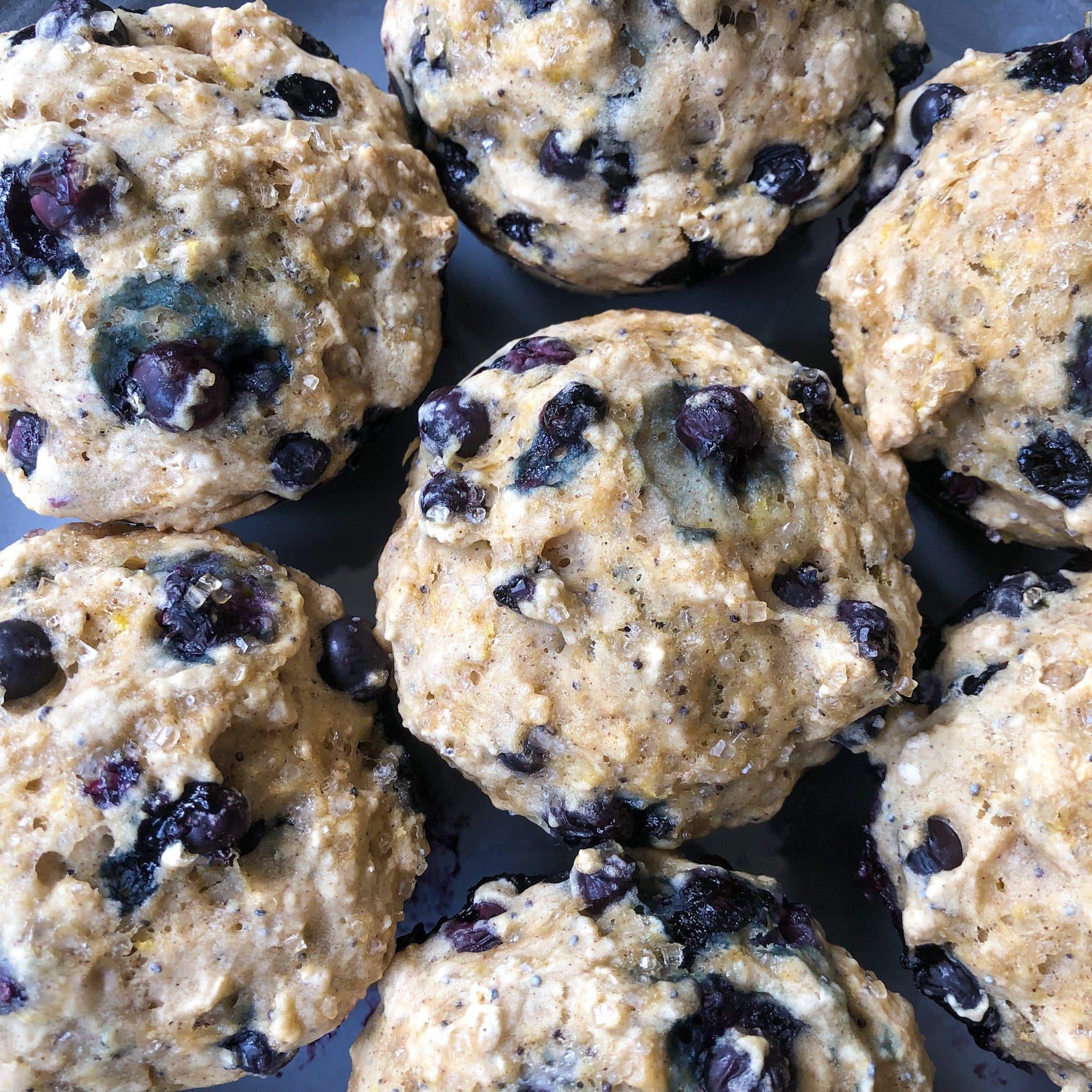 flat of blueberry muffins