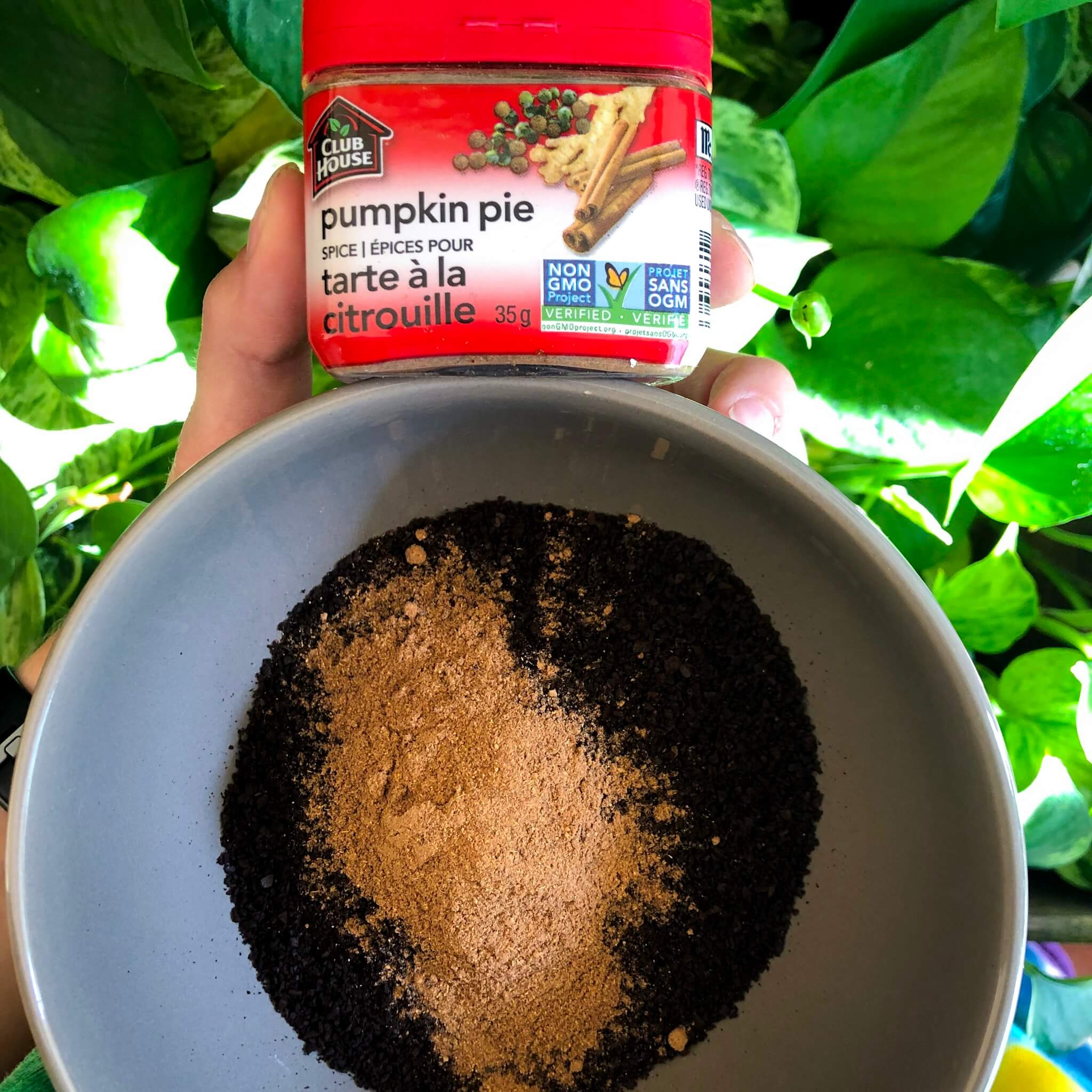pumpkin pie spice in coffee grounds