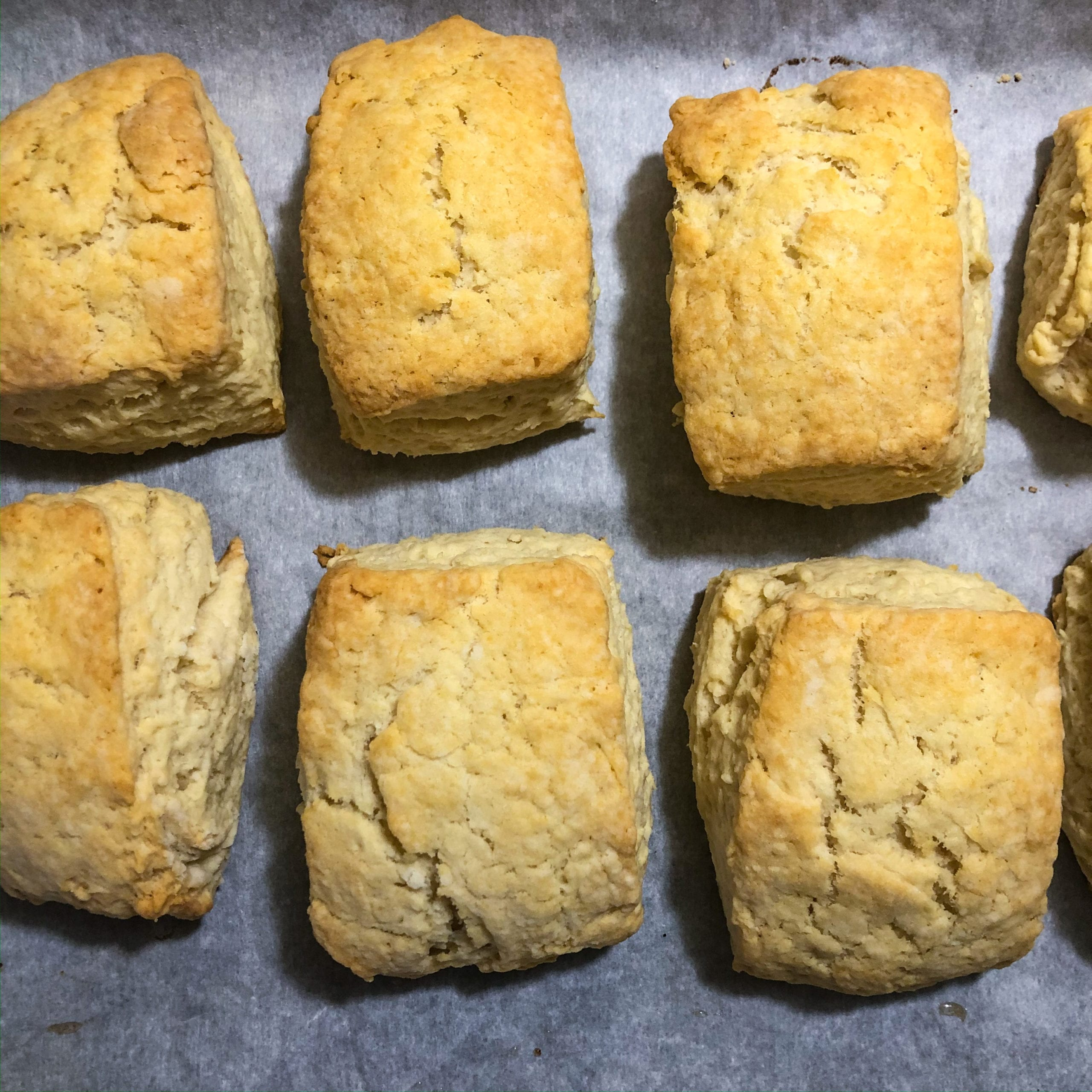 vegan biscuit recipe cooked